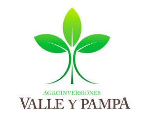 Valle y Pampa