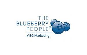 MBG Marketing