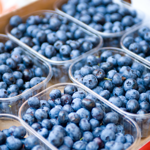 blueberry-cartons-_-ffp-300x300